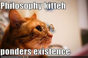 philosophy_kitteh1