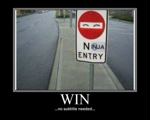 sign_win_demotivational_by_neonvictorian-d393hvh