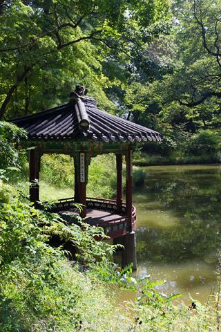 Le jardin secret du Changdeokgung