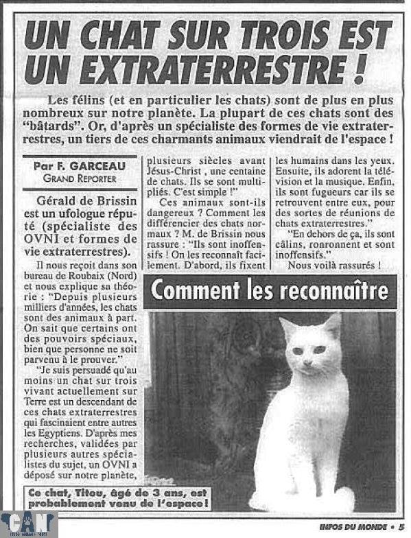 chat_extraterrestre
