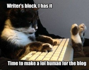 writers_block_lolcat