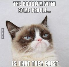 grumpycat_peopleexist