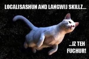 lolcat_translation
