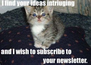 lolcat_newsletter