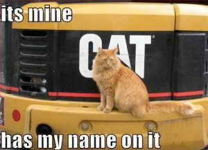 lolcats-its-mine-has-my-name-on-it