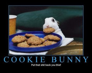 cookie-bunny-thief